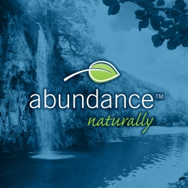 Abundance Naturally Inc.